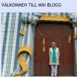 106-åriga Dagny Carlssons blogg är nedstängd